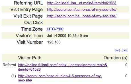 SEO ROI logs showing traffic from Full Sail's website as an assignment