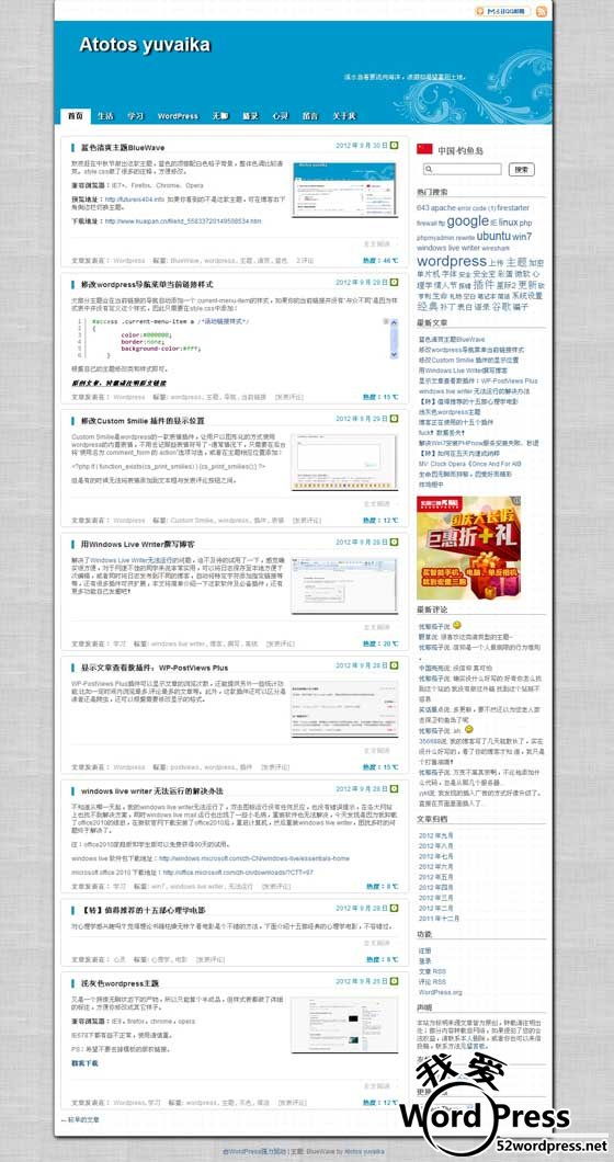 0742113qh wordpress主题:中文博客bluewave主题