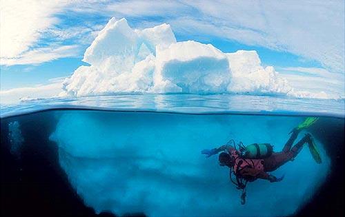 дайвинг в Антарктике