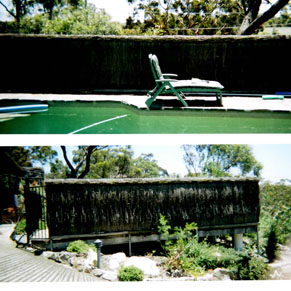 """""""this an example of pool-safe brushwood"""""""