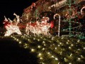 Great and Creative Outdoor Christmas Lights Home Decoarating Ideas santa with deer