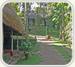 Spice Village Resort, Periyar