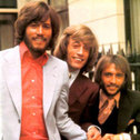 Picture of Bee Gees