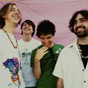Picture of Animal Collective