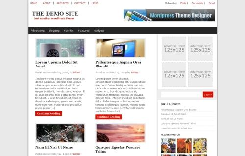 The Web News Theme