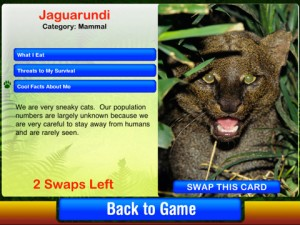 rainforest survival challenge app 300x225 New eco inspired iPad app for kids!