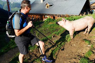 Hörbie hat Schwein