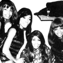 Picture of The Ikettes