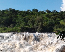 12 Days tour to Murchison falls, Kibale Queen Elizabeth, Bwindi and Lake Mburo