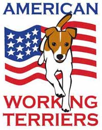 American Working Terriers