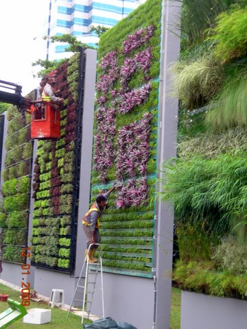 Photograph of a Vertical Garden Permaculture and Horticulture