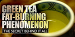 Green Tea Fat-Burning Phenomenon!