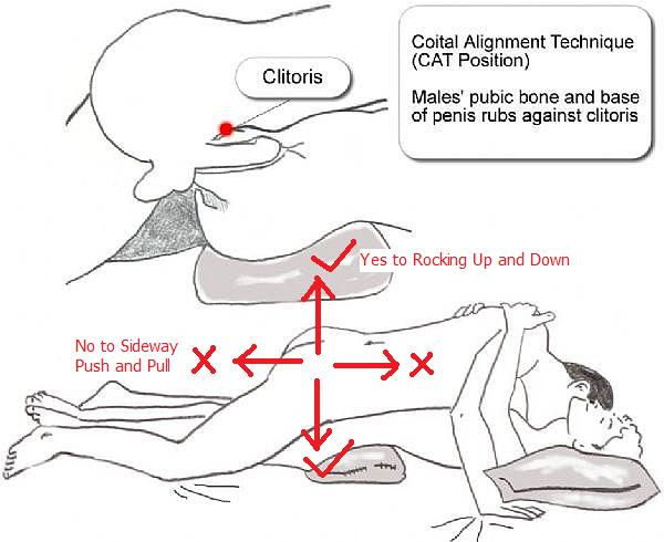 Coital Alignment Technique How and Why
