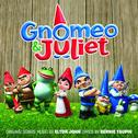 Cover of Gnomeo and Juliet