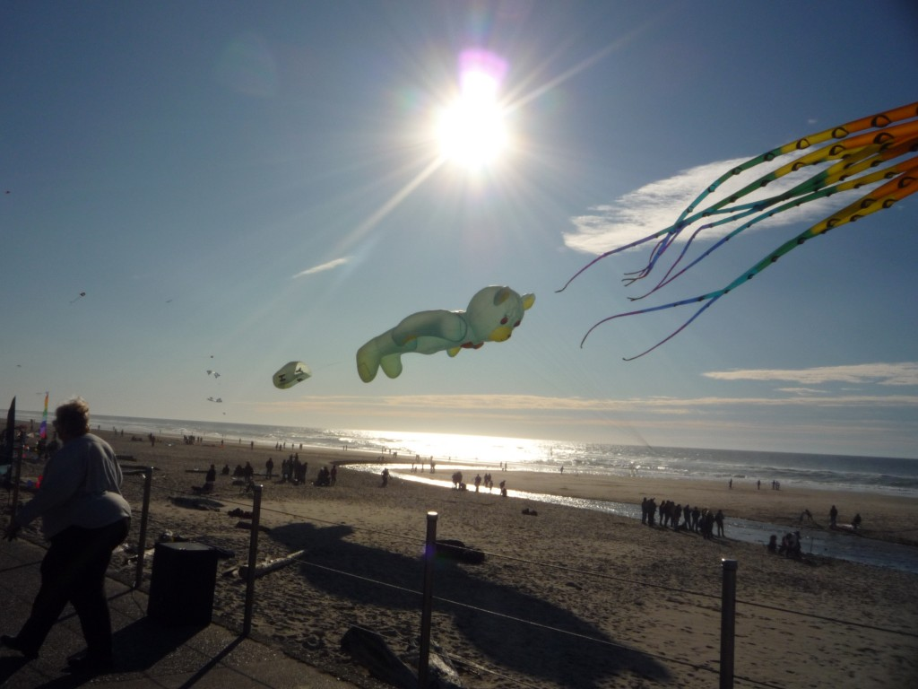 giant kites in Oregon