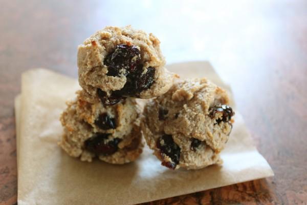 Almond & Dried Cranberry Cookie Bites (gluten-free, paleo, & vegan)