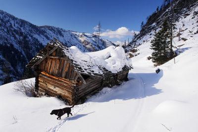 Bei der verfallenen Hütte der Vockentalalm