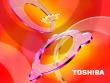 Toshiba Intense Colors