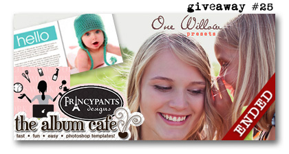 One Willow Presets Album Cafe Francypants Design Giveaway Paperie Boutique