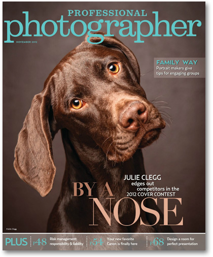 Professional Photographer Magazine November 2012 cover Paperie Boutique