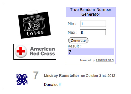 Jo Totes Red Cross Hurricane Sandy donations