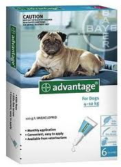 dog flea product