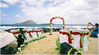 http://www.weddingthemes.net/images/christmas%20theme%20wedding%20on%20beach.jpg