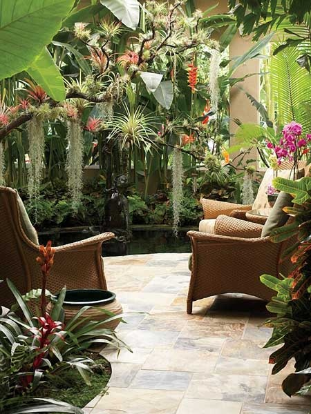 patio garden tropical landscape and color