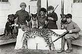The adventures of Russian tiger hunters in the wilderness of Korea