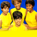 Picture of The Chiffons