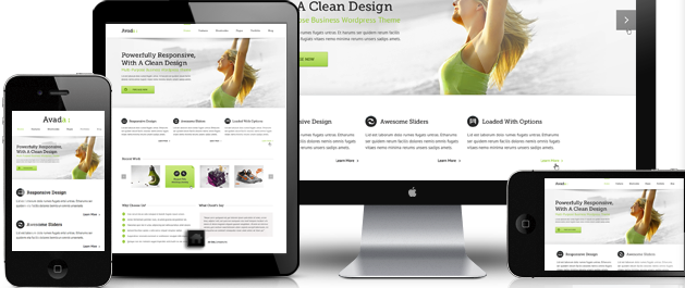 Example Of Responsive WP Theme