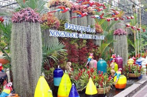 Nong Nooch Botanical Garden - Pattayahttp://commons.wikimedia.org/wiki/File:Nong_Nooch_Pineapple_garden.JPG