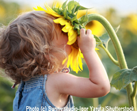 child with sunflower in Natural Child Magazine - natural parenting, green living from pregnancy through birth and early childhood