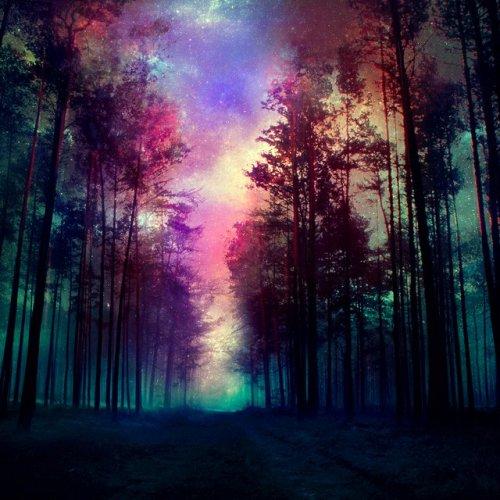 Магия деревьев.