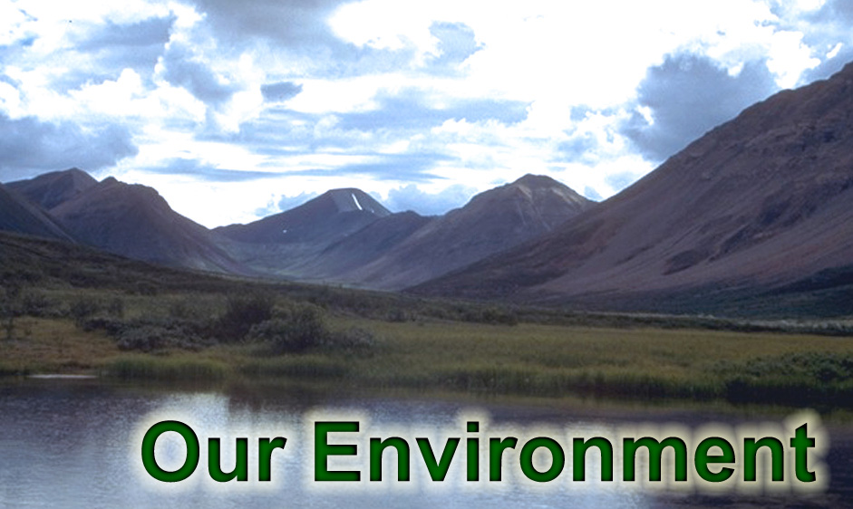 Click here to learn more about Our Environment