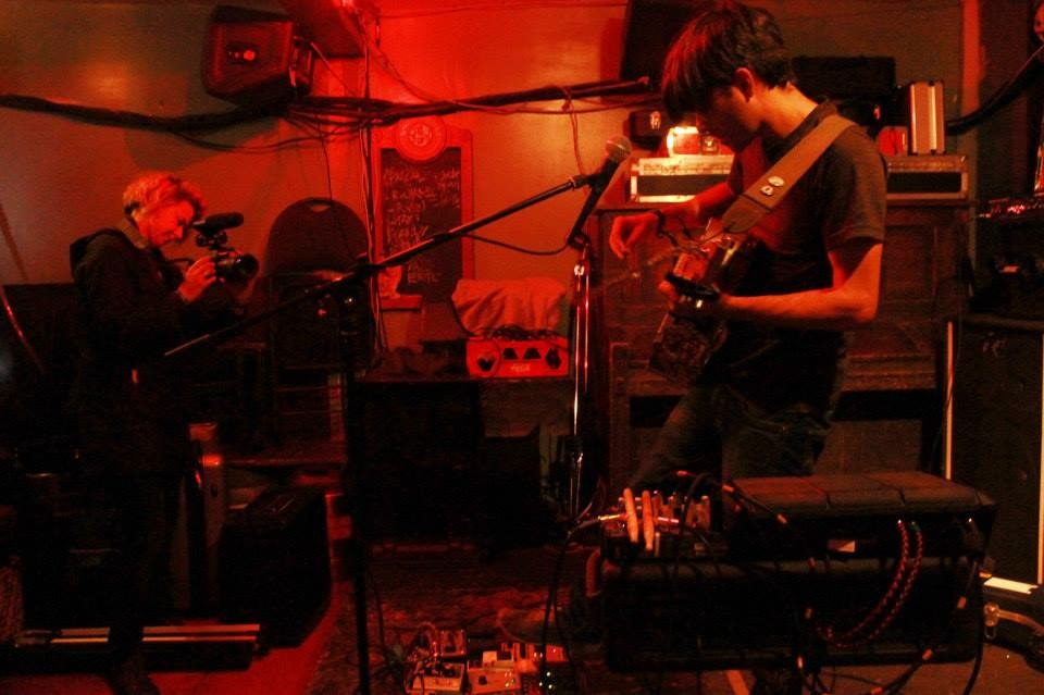 Boxwood_live_looping
