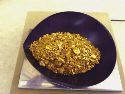 10 Ounces of Gold