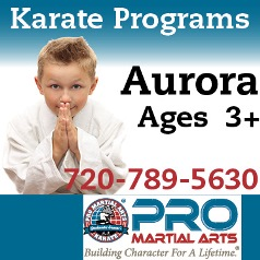 Pro Martial Arts Grand Opening