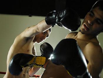 apostar boxeo