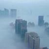 上海的霧霾。twitter圖片@boughb