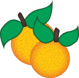 Oranges cut file