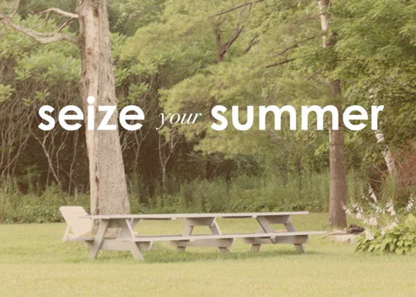 a tool to help you seize your summer