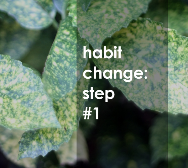 the first step to changing a habit
