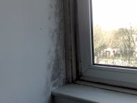 Stop Condensation Problems SW London