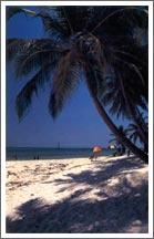 Kerala Tourism, Kerala Beaches & Backwaters
