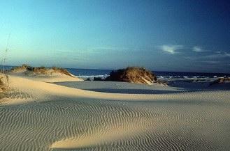 Padre Island National Seashore