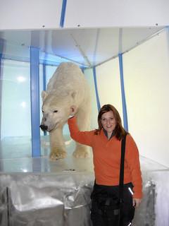 Descubriendo el museo Arktikum