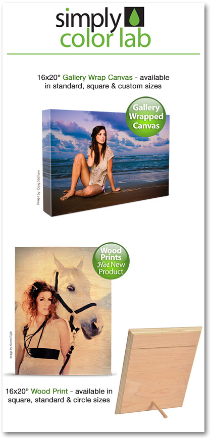 Simply Color wood canvas gift pack