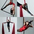 "Aerial Silk Artist ""Marina Luna"" to Perform at VIA Motors Booth at North American International Auto Show"