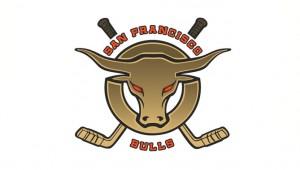 Bulls Logo-main